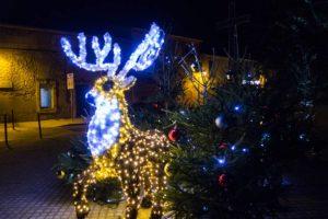 Graveson Noël 2014